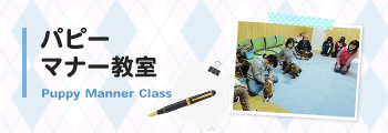banner_puppy_manner_class